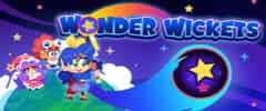 Wonder Wickets Trainer