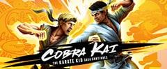 Cobra Kai The Karate Kid Saga Continues Trainer