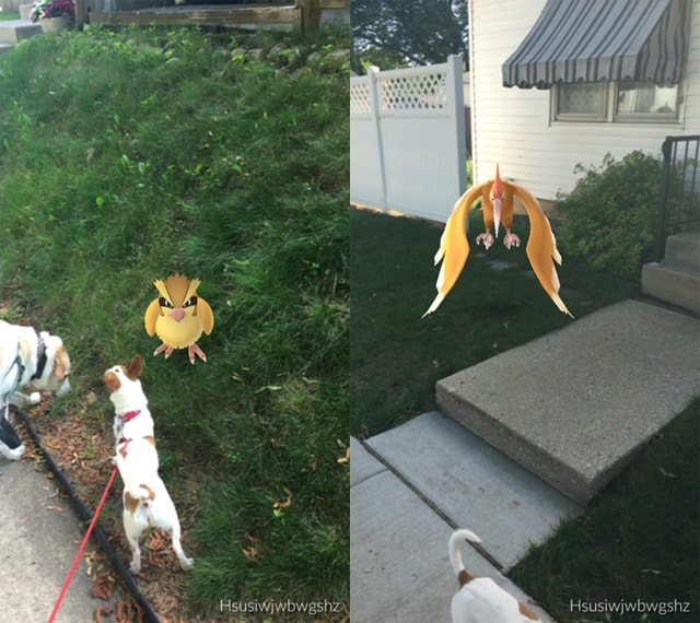 Pokemon Go Review Screenshot