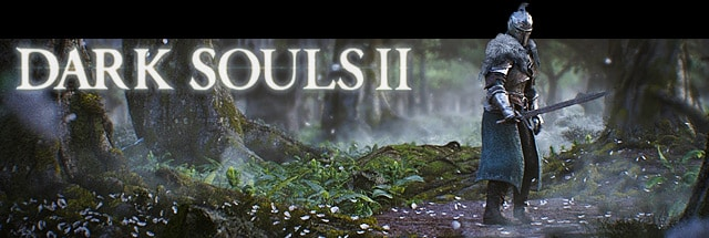 Dark Souls II Message Board for PC