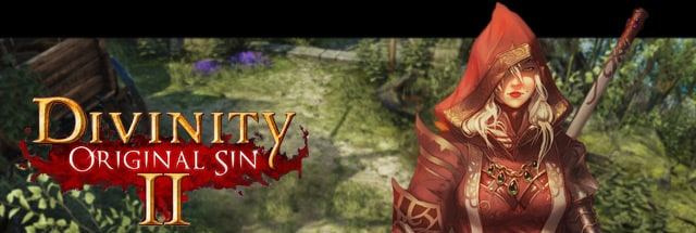 Divinity: Original Sin 2 Message Board for PC