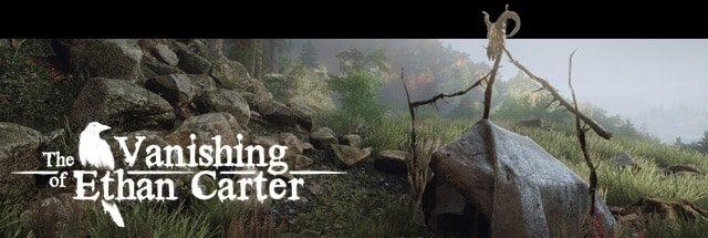 Vanishing of Ethan Carter, The Message Board for PC