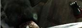 Resident Evil 6 Savegame for PC