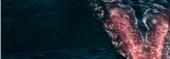 Dark Souls Savegame for PC