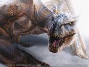 Monster Hunter 2 Wallpapers