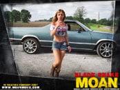 Black Snake Moan Wallpapers